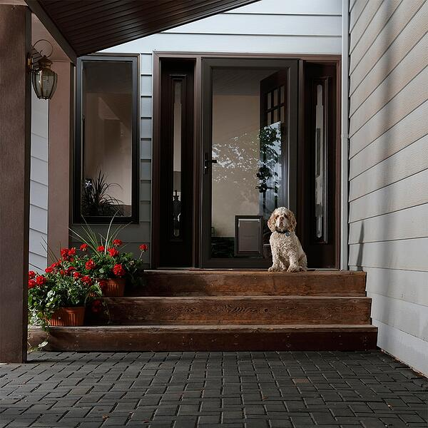 149PV Brown Pet Door with Aged Bronze Straight Lever Handle