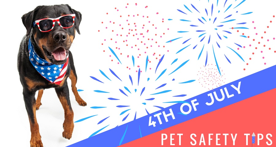 4th of July saftey header