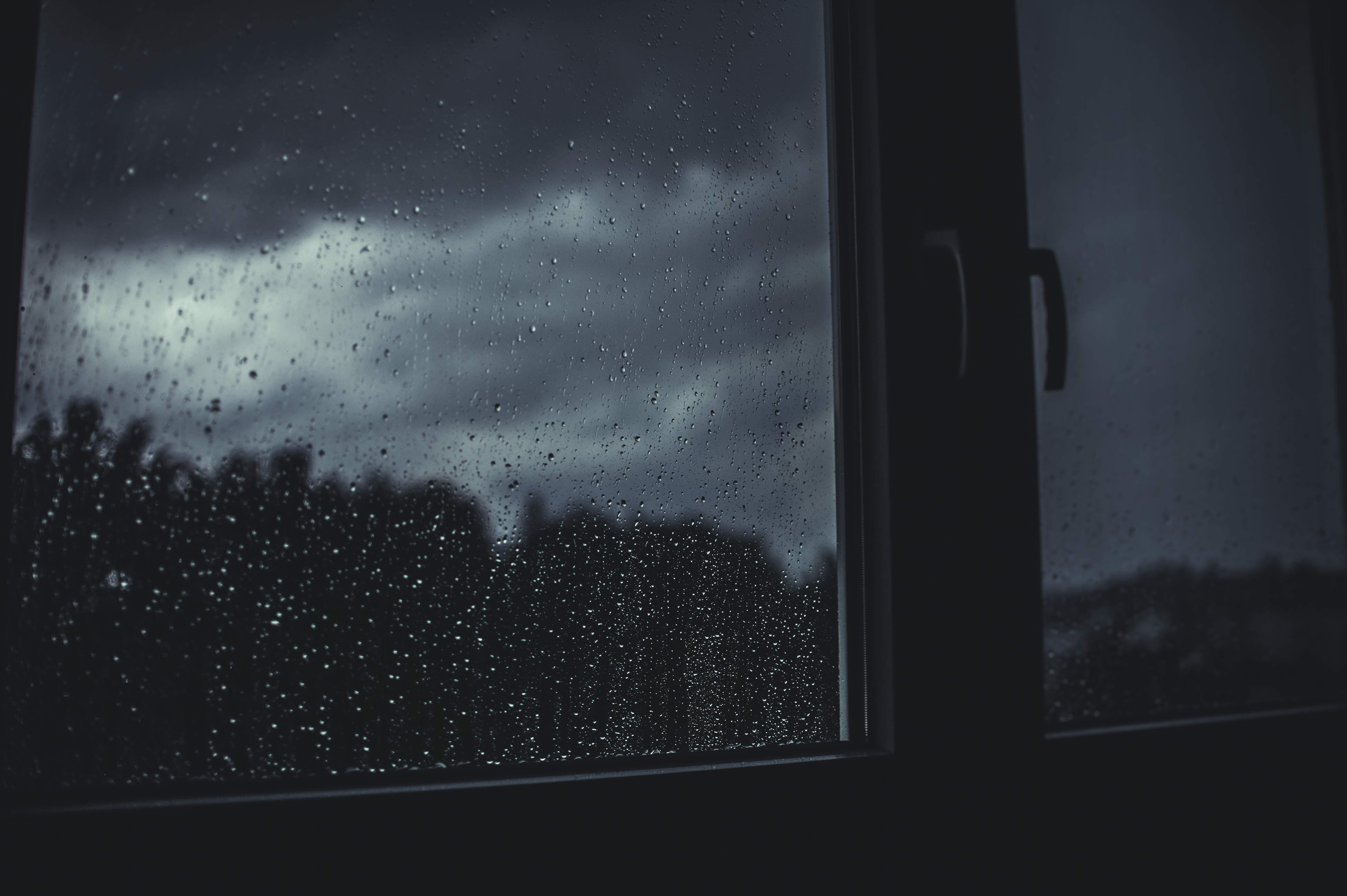 What To Do If Your Storm Door Is Leaking | Rain.jpeg