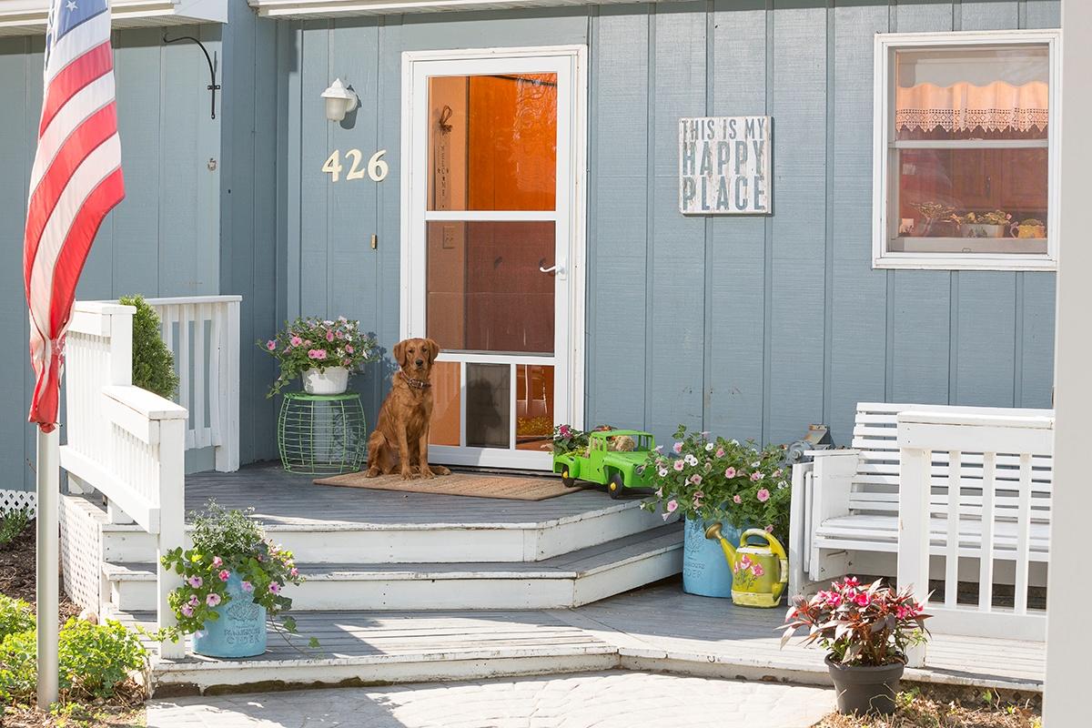 LARSON storm doors are Dog-friendly