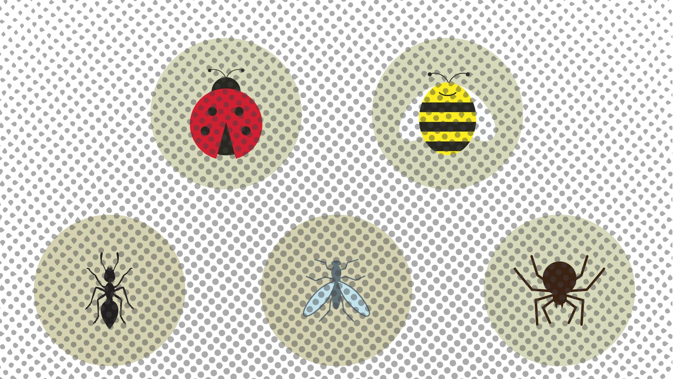 Mosquito Blog
