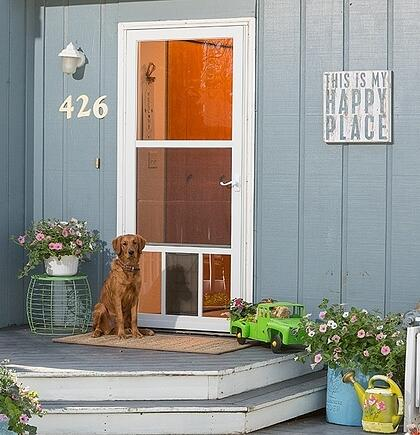 The 4 Types Of Storm Doors Dogs Will Love
