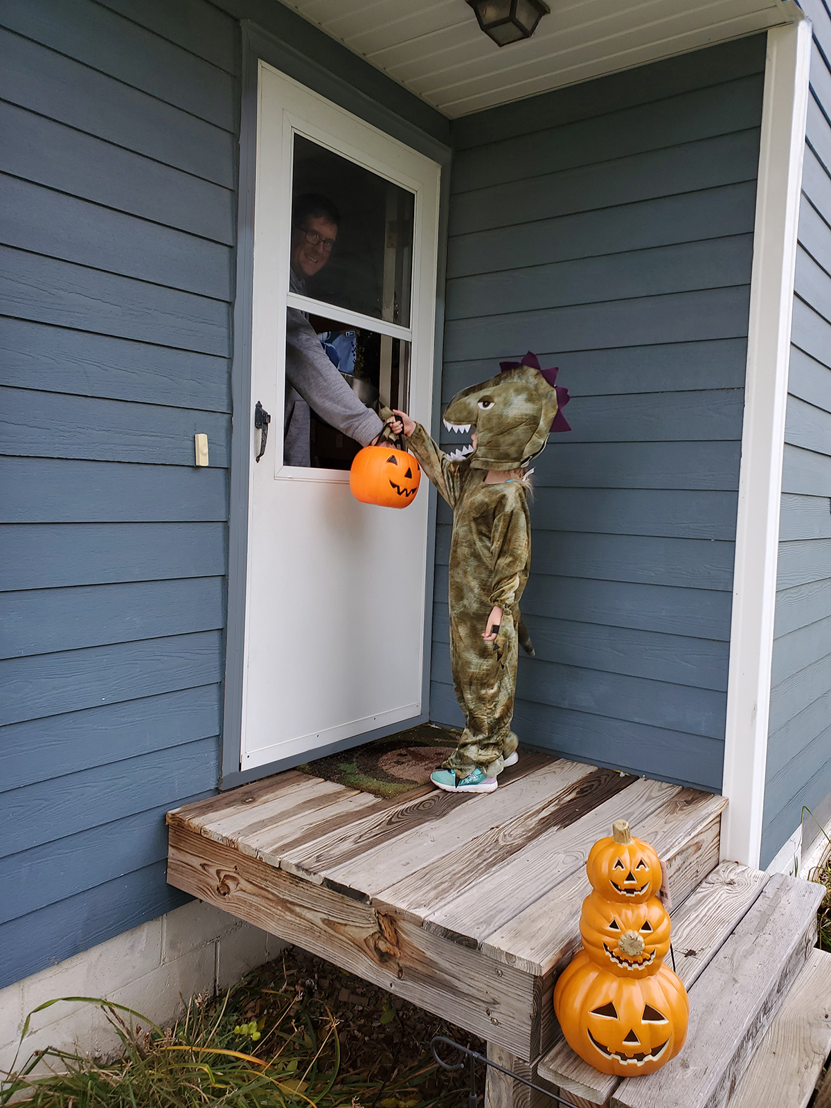 Halloween Storm Door Tips