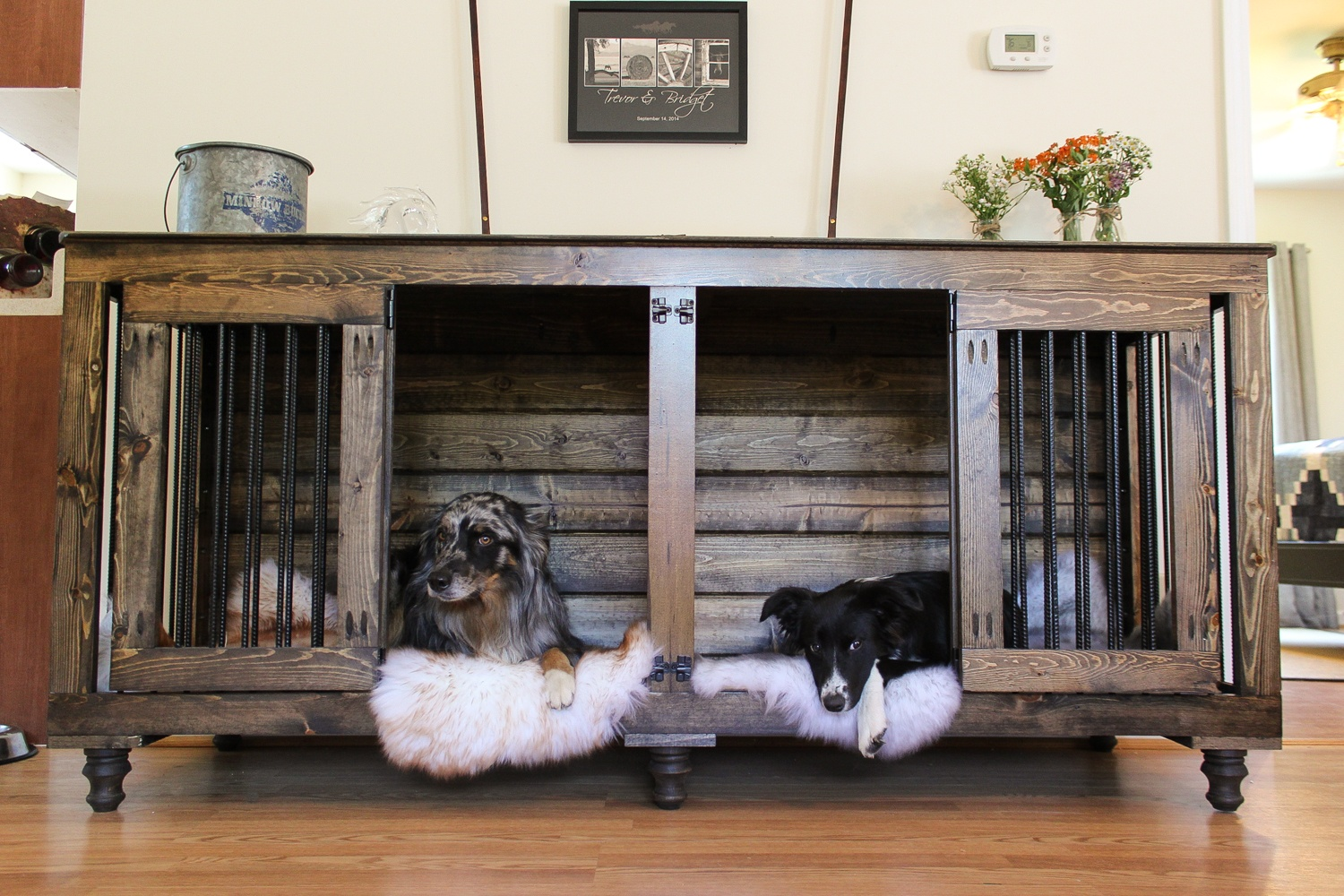 Upgrade Your Home Into A Dog's Dream With These 7 DIY Projects
