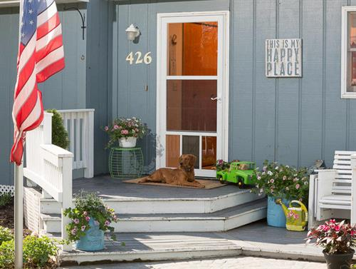Petview Storm Door: A Fido-Friendly View