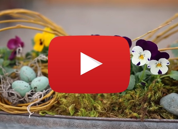 How To Make a Spring Centerpiece [Video]