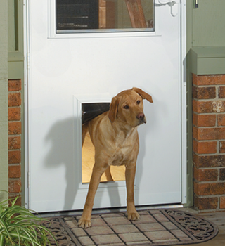 Get the Most Out of Your New Storm Door Pet Door