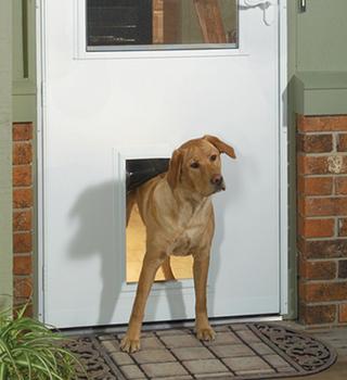 Get the Most Out of Your New Storm Door Pet Door