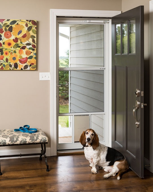 Who Let The Dogs Out? Popular Storm Doors For Dogs.