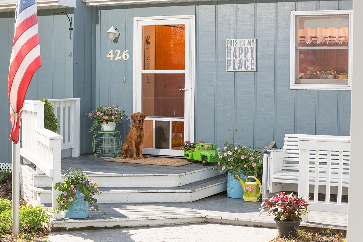 3 Dog-Friendly Home Improvement Tips