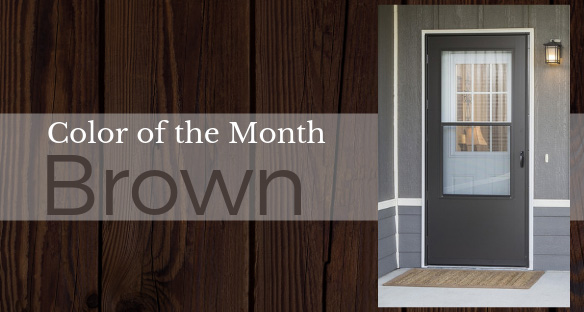 Color of the Month - Brown